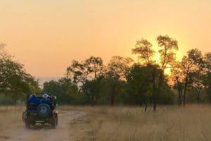 sunrise from a safari jeep in India