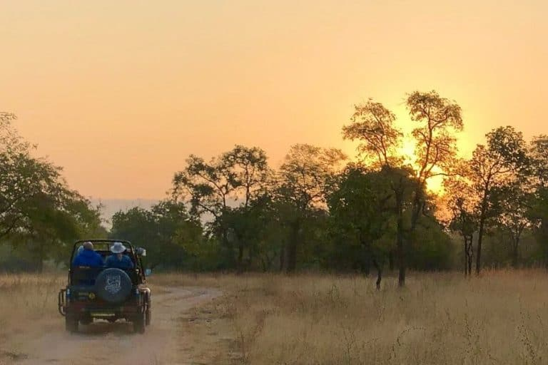 sunrise from a safari jeep in India