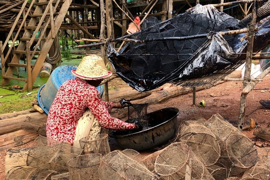 shrimp fisherman kampong phluk