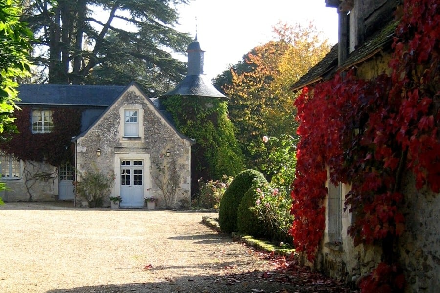 auautumn leaves in loire valley
