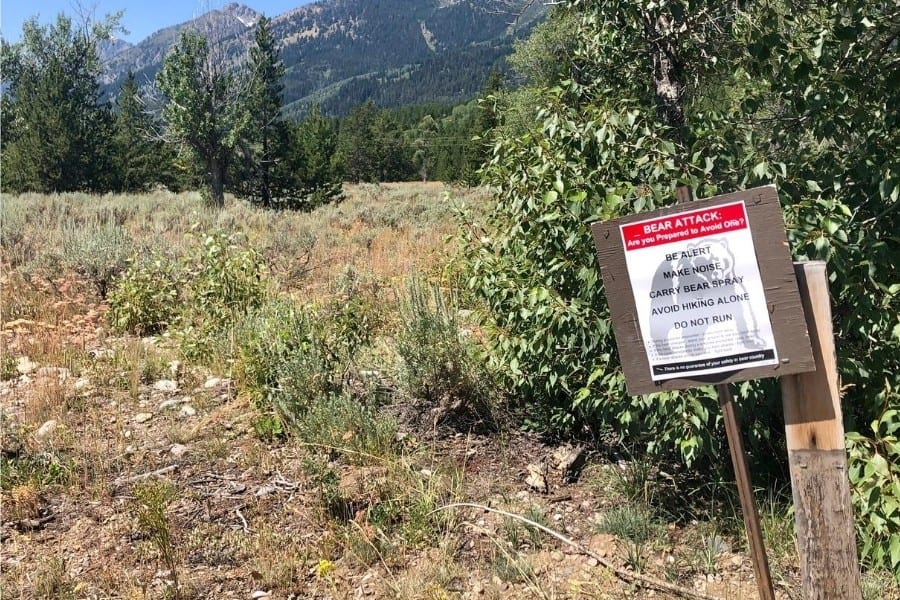 A sign cautioning visitors about bears in Grand Teton National Park