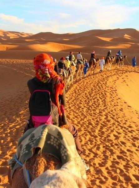 A camel safari in the Morocco Sahara desert