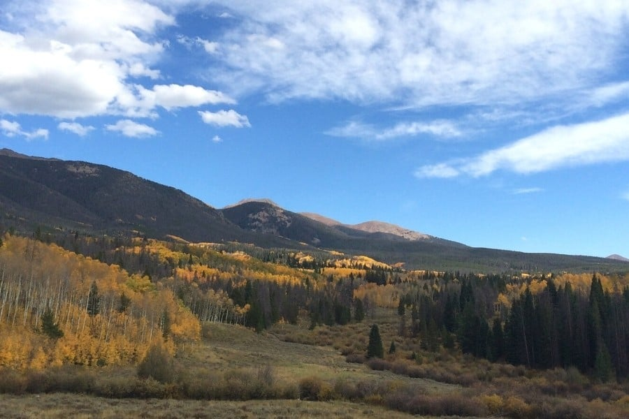 View from a Colorado yurt in autumn