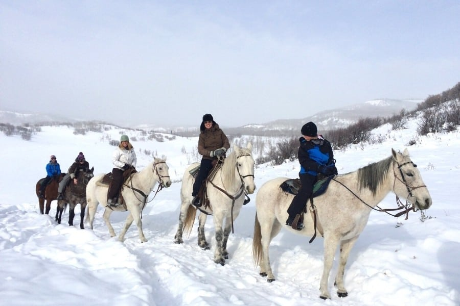 A group horseback riding near Steamboat Springs