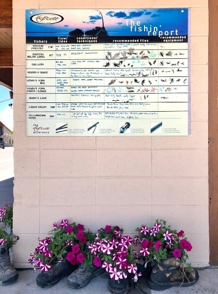 A fishing report is posted on the wall in West Yellowstone. Old boots serve as unusual flower planters beneath it