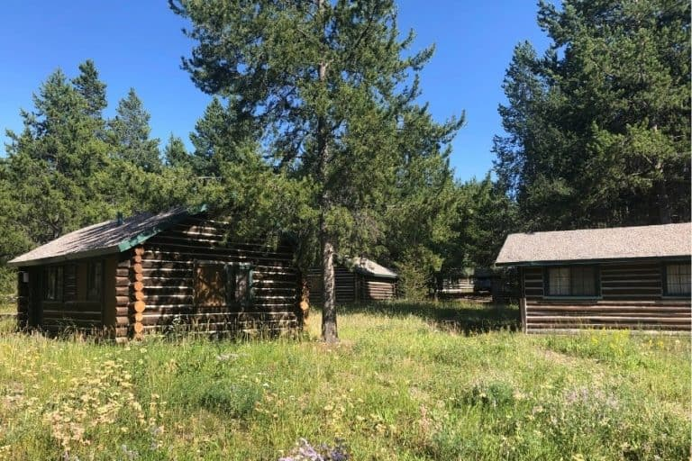 Several cabins sit amongst wildflowers at Colter Bay Village at Grand Teton National Park