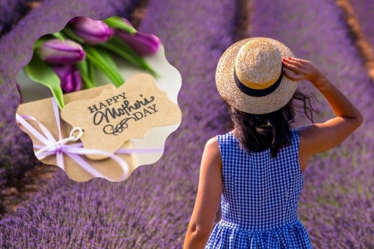 A woman stands in a lavender field in France, with an overlay of a Mother's Day gift