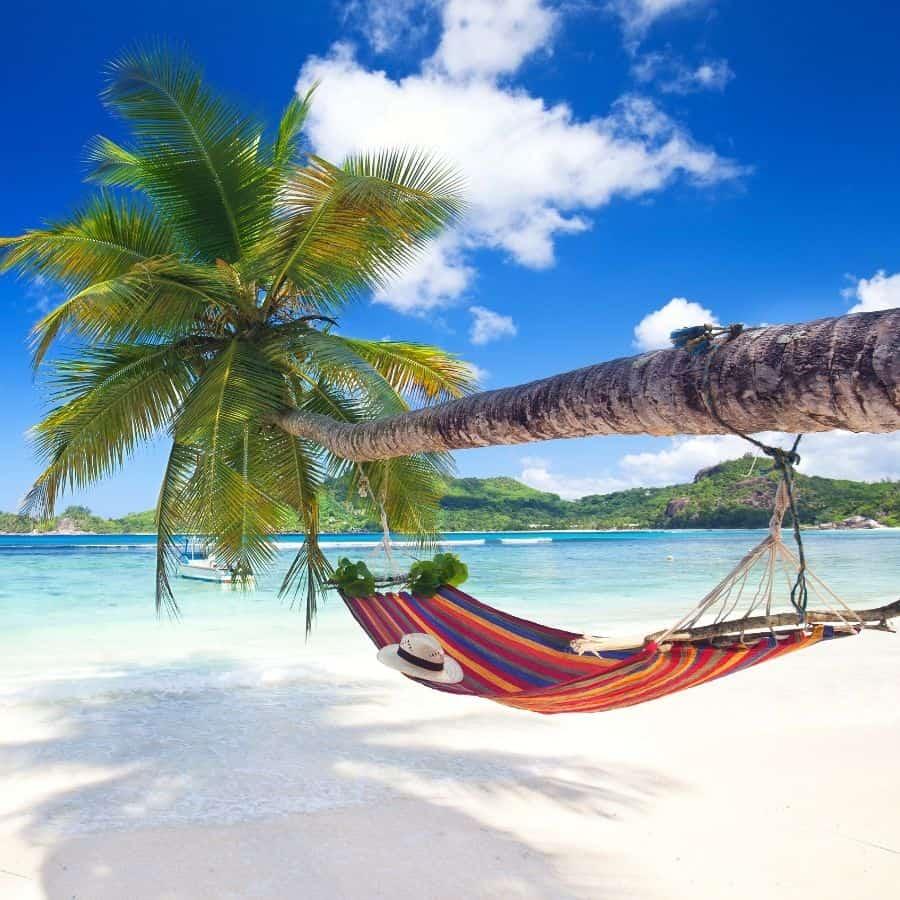 a hammock hangs over the ocean
