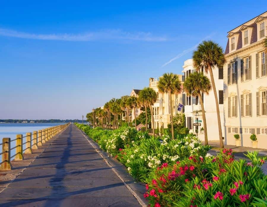 Waterfront in Charleston South Carolina with flowers and buildings beyond