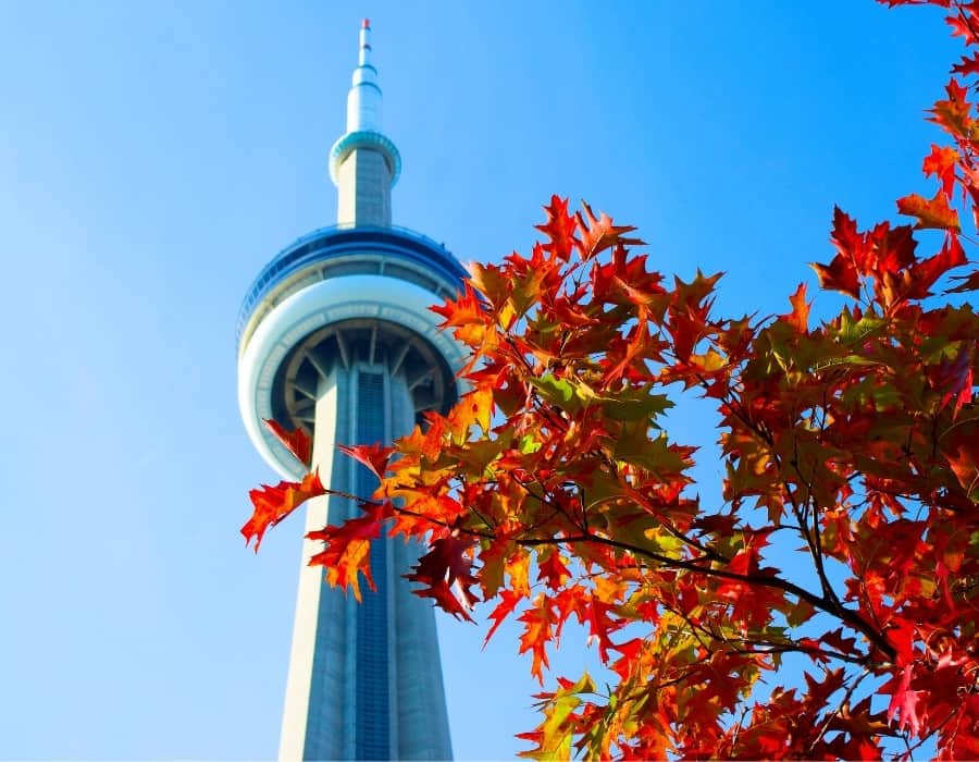 Toronto's CN Tower with red leaves in the foreground. Fall is an ideal time for a weekend in Toronto